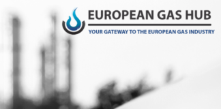 Reports and presentations on the European Gas Market